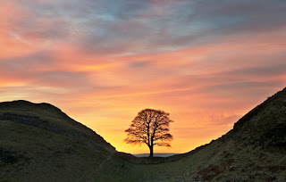 Hadrian's Wall Guide, Northumberland