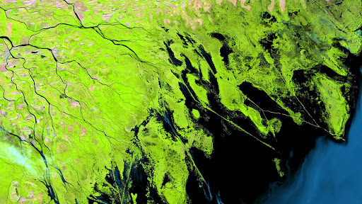 Volga River Delta, Russia.jpg
