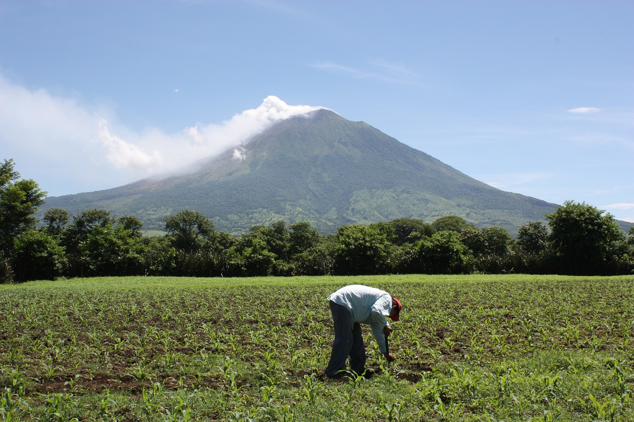 Imagen de El Salvador