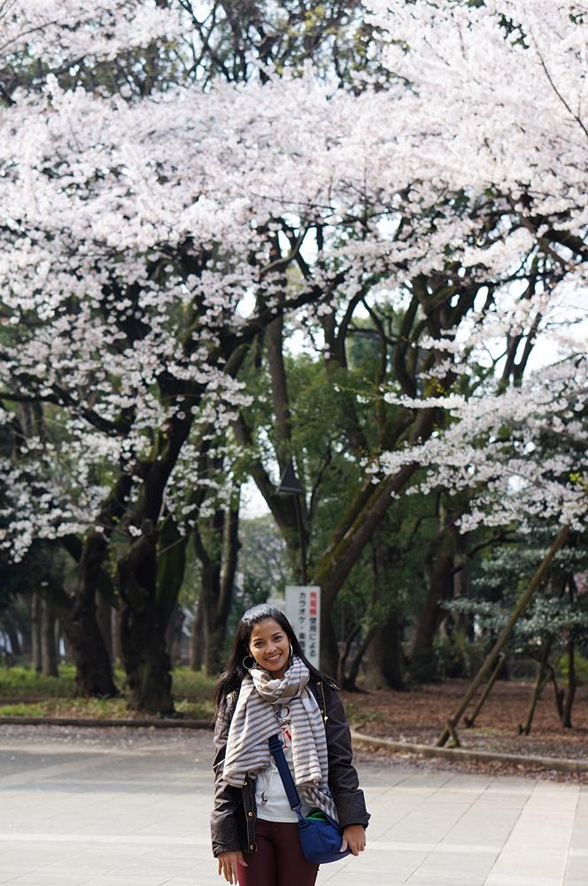 704 Ueno Park