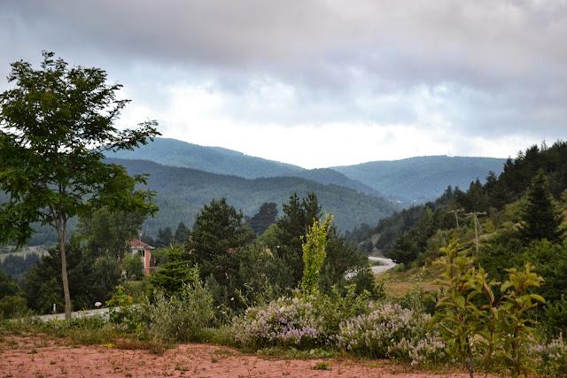 Kastamonu, Küre'deki Ecevit Hanı etrafındaki Küre Dağları ormanları