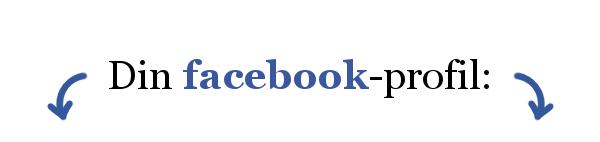 Har du styr på din LinkedIn og din Facebook?