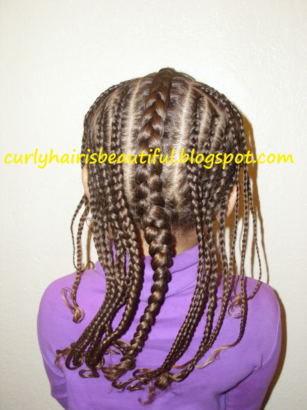 Curly Hair Is Beautiful Braided Faux Hawk With Flair