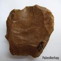 Bursa'nın Paleolitik Çağ Kültürleri