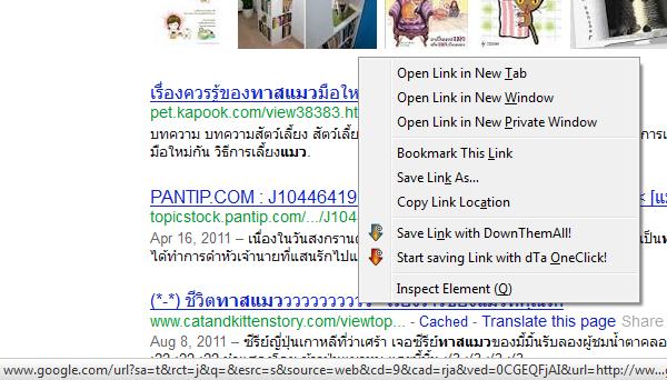 ก่อนติดตั้ง: ที่มุมซ้ายล่างเราจะเห็น url ยาวๆ ของ google