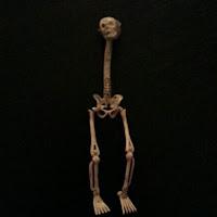 Blunz's avatar