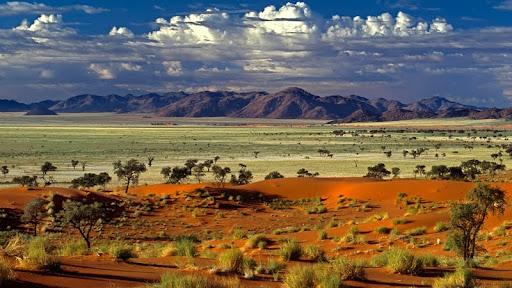 Tok Tokkie Desert, Namibia, Africa.jpg