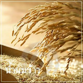 ผลิตภัณฑ์จากข้าว น้ำนมข้าว รำข้าว จมูกข้าว ช่วยบำรุงสุขภาพ และ ผิวพรรณ
