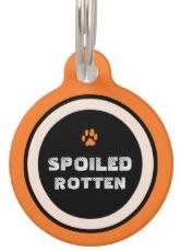 Orange Custom Dog ID Tag