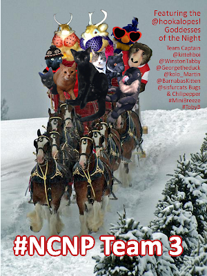#NCNP Sleigh Race Team 3 Team Captain @kittehboi.
