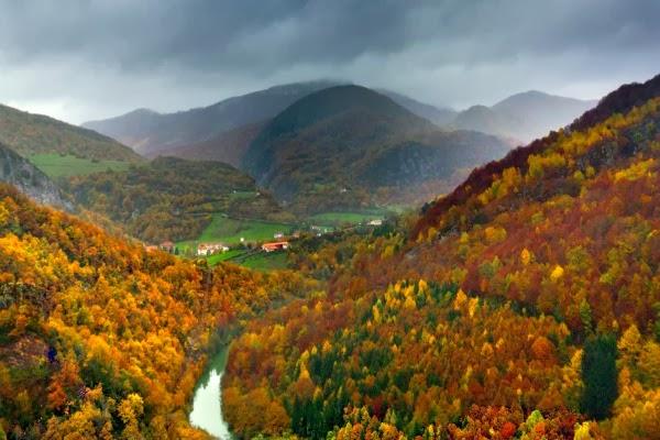 Los mejores bosques de España
