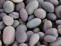 Rounded pebbles suitable for a sling