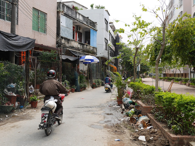 man riding down a street with many plants in Yangjiang, China