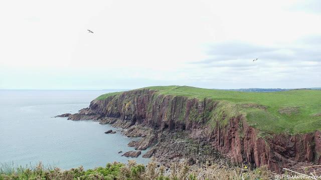 🇬🇧 英國 | 獨自慢遊 - Caldey Island