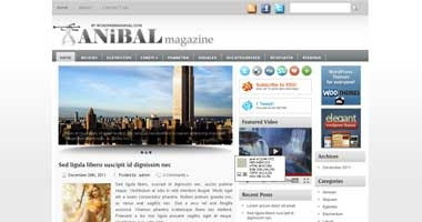 Free Wordpress Theme - Anibal
