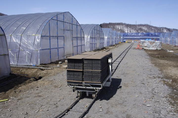写真:育苗箱は、自走するトロッコでハウスへ運ばれます