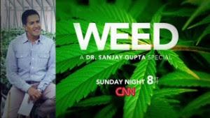Sanjay Gupta Special, CNN Weed