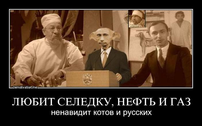Олланд - Путину: Взаимоотношения РФ со странами Запада должны строиться на принципах открытости - Цензор.НЕТ 7575
