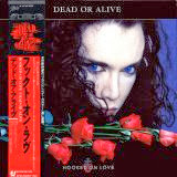 Dead or Alive - Hooked on Love