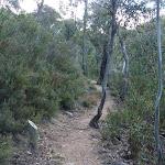 3km milestone post on the Pallaibo Track (303208)