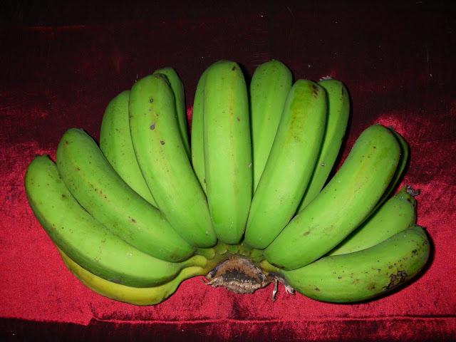 Bogai 山蕉