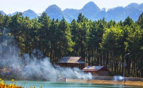5 Du lịch Mộc Châu: ngút ngàn rừng thông Bản Áng