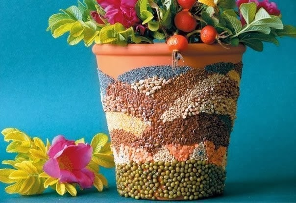 Vaso com sementes