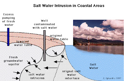 what is saltwater intrusion this diagram shows how saltwater intrusion  happens  as a surface well withdrawals water and depletes