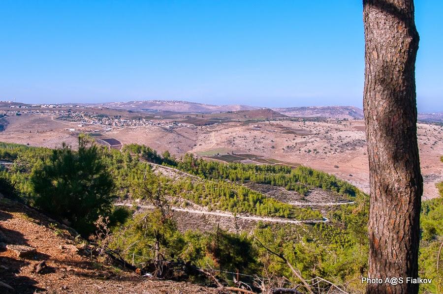 Пейзаж Верхней Галилеи. Гид в Израиле Светлана Фиалкова.