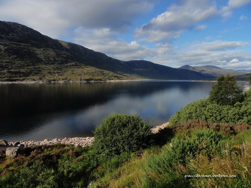 - Passeando até à Escócia! - Página 15 DSC04008