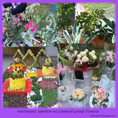 выставка цветов на празднике города Гомеля 1