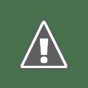 traian basescu Traian Băsescu a fost suspendat