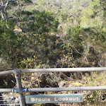 Broula Lookout (177615)