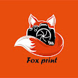 Fox P