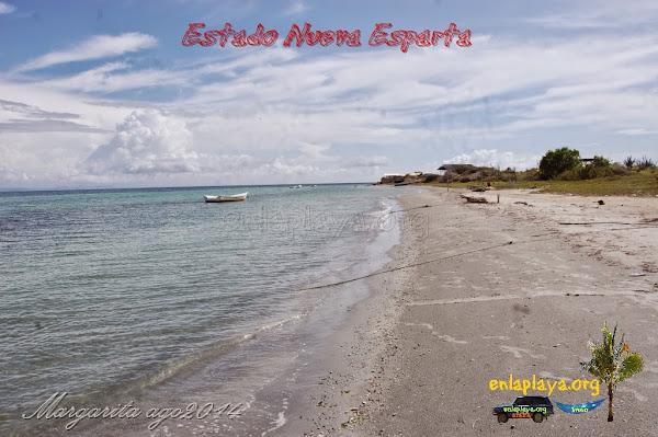 Playa Punta de Mangle NE127, Estado Nueva Esparta, Tubores