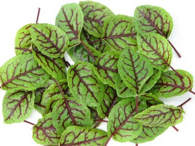 More Caribbean hormone-healthy goodness — Sorrel