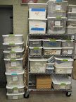 Just SOME of our decoration storage - I love that there are bins labeled