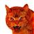 Rred Cat