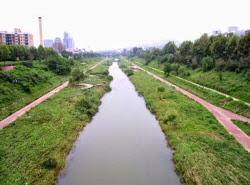 강남 천산길