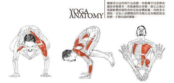 鶴式(Crane Pose)