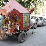 Une vache transporte un temple mobile, Delhi
