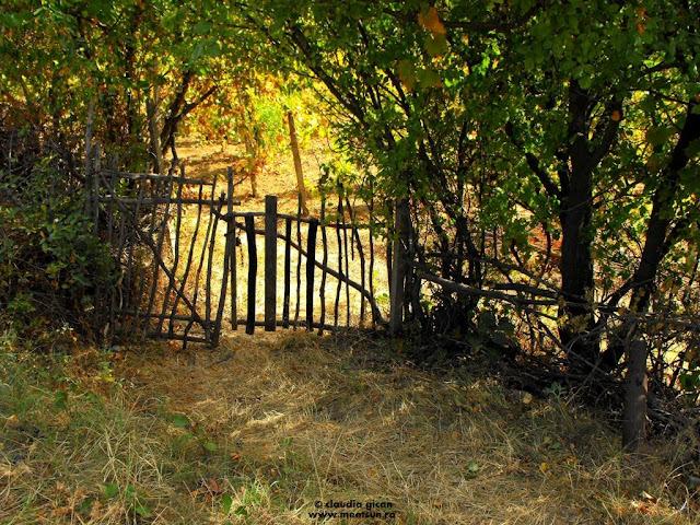poarta dintre vii