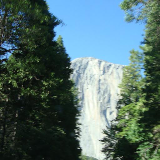 Mary Owens Address Phone Number Public Records Radaris
