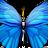 Nicole Williams avatar image