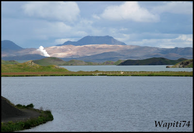 Un tour  d'Islande, au pays du feu... et des eaux. 30-Myvatn