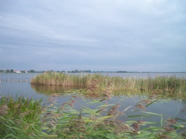 160km Nimègue -Rotterdam: 15-16 septembre 2012 100_8944