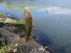 Fish Lake County Park