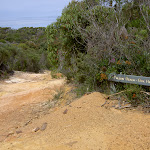 Tallow Beach and Box Head track intersection (20978)