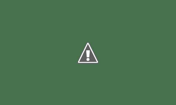 Garrafas de vinho e luzes pisca pisca são uma ótima combinação para criar uma decoração natalina.