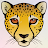 Dylan Howard avatar image